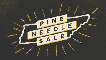 Pine Needlefeatured